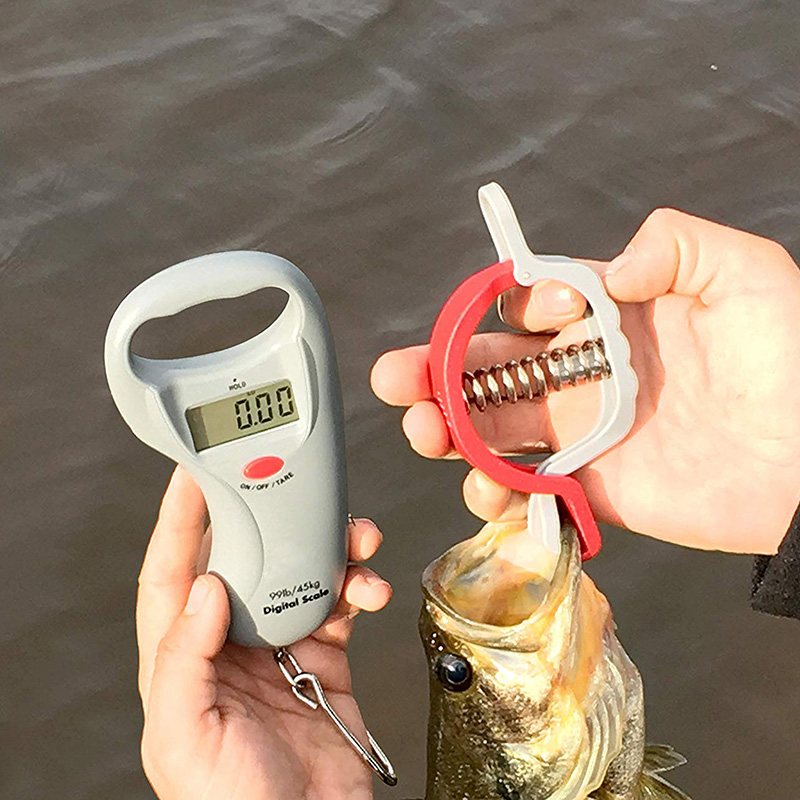 1m Tape Portable Digital Fish Scale